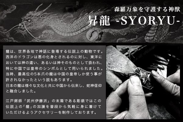 昇龍シリーズTOP画像